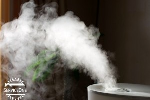 Home Humidifier Benefits