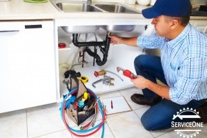 5 Fun Facts About Plumbing