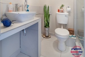 7 things you should never flush down a toilet