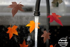 Fall plumbing maintenance