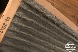 Why you need to change your home's air filter