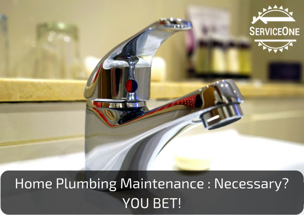 Home Plumbing Maintenance - Necessary? You Bet!